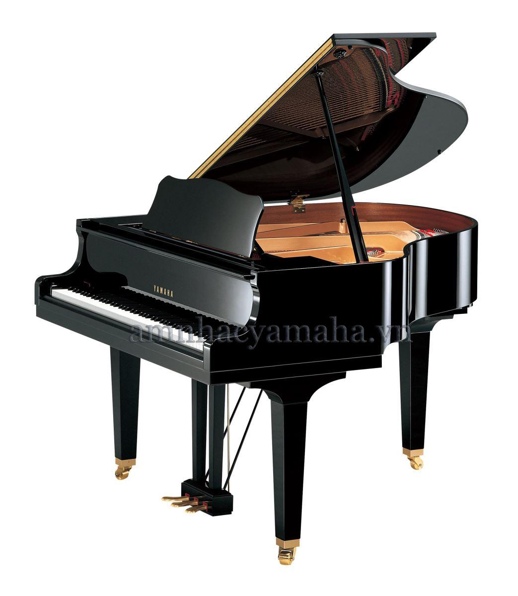 Piano lớn (Grand Piano) C2